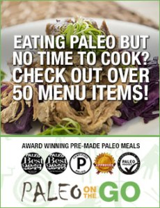 paleo on the go affiliate banner