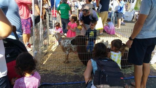 Westchester Farmers Market 7