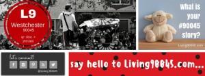 Living90045.com - Westchester Up Close & Personal